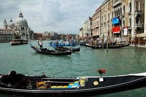 Venice - Istituto Venezia